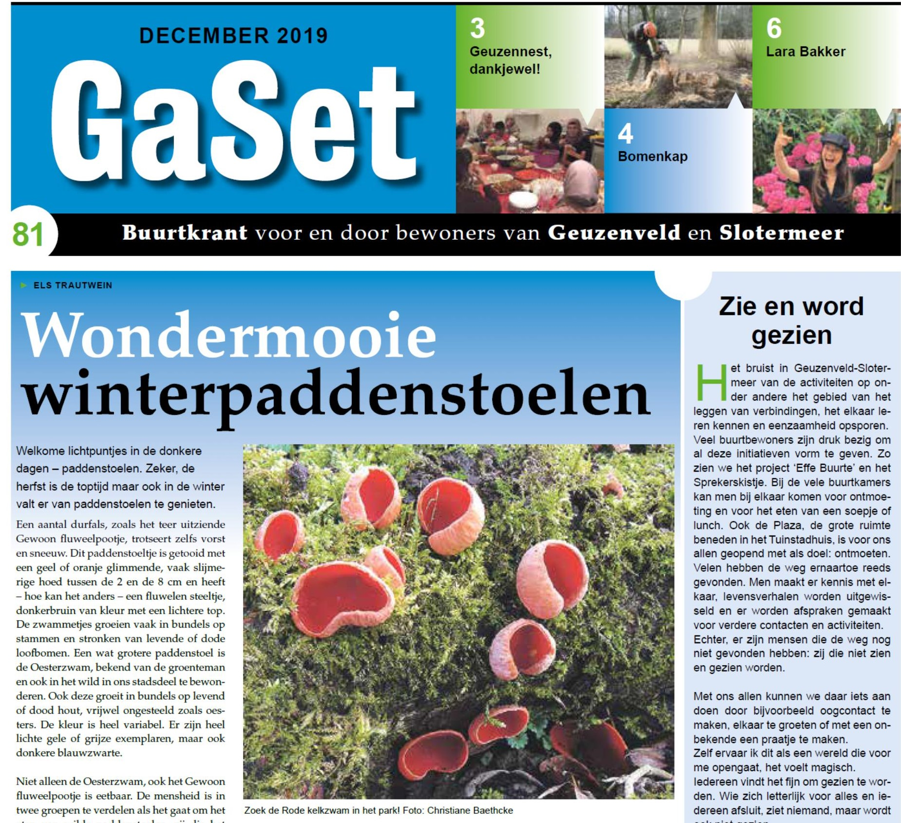 cover GaSet 81